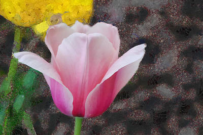Mixed Media - Bloomin' by Trish Tritz