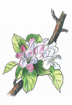 Painting - Blooming Apple Tree by Masha Batkova
