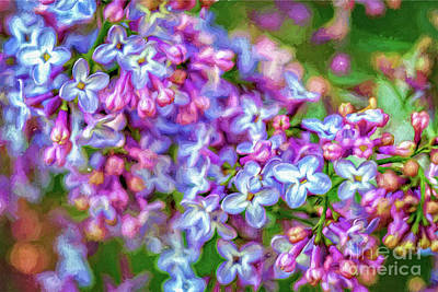 Digital Art - Blooming Lilacs by Gene Healy