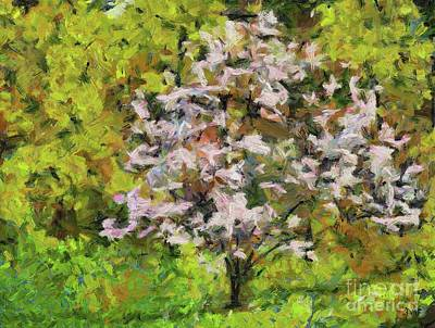 Painting - Blooming Magnolia by Dragica Micki Fortuna