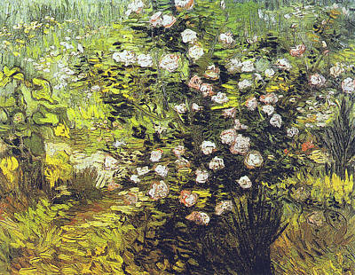 Painting - Blooming Rose Bush by Vincent van Gogh