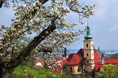 Photograph - Blooming Spring In Prague. Church Of Our Lady Of Victory And St Nicholas by Jenny Rainbow