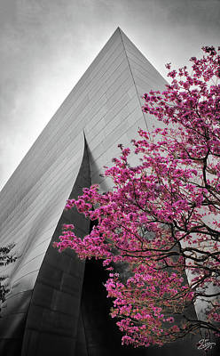Photograph - Blooming Tree Near Disney Hall by Endre Balogh