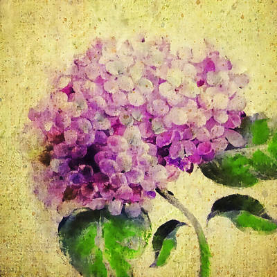 Cheers Mixed Media - Blooming With Happiness - Hydrangea by Stacey Chiew