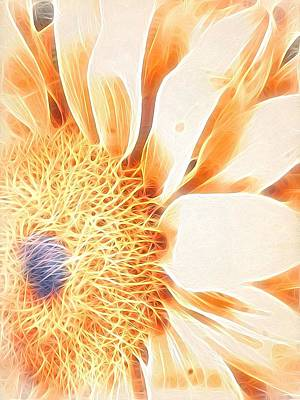 Bloomlit Art Print