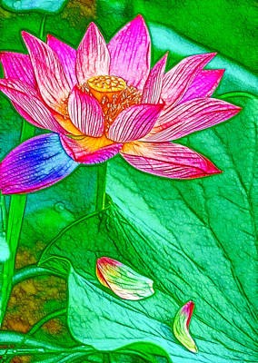 Blossom Pink Lotus Flower 1 Art Print by Lanjee Chee