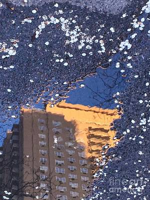 Photograph - Blossom Snow - World In A Puddle by Miriam Danar