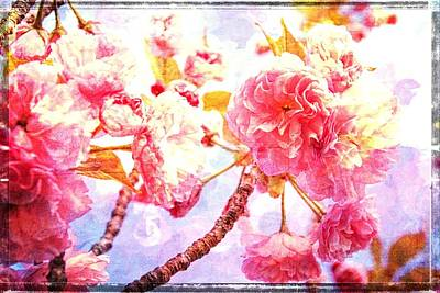 Photograph - Blossom Textures by Alice Gipson