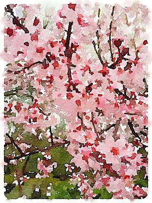 Digital Art - Blossom Trail by Shannon Grissom