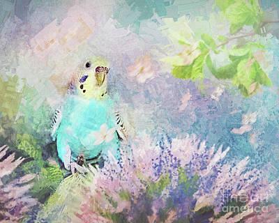 Parakeet Digital Art - Blossom by Ulanawa Foote