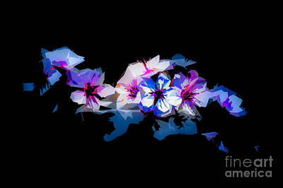 Photograph - Blossoms Abstracted by Michael Arend