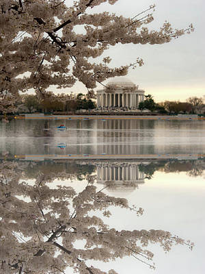 Cherry Blossom Festival Photograph - Blossom's Reflection by Frank Garciarubio