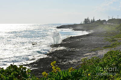 Photograph - Blow Hole Coastline by Darla Wood