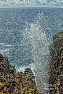Photograph - Blow Hole - Natural Fountain In Hummanaya, Sri Lanka by Patricia Hofmeester
