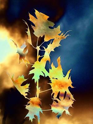 Abstract Digital Digital Art - Blowin In The Wind II by Tim Allen