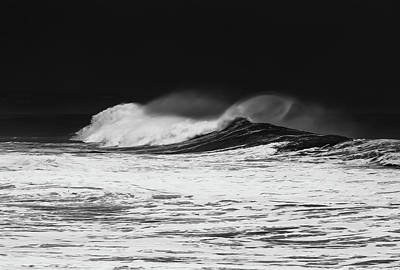 Photograph - Blowing by Edgar Laureano