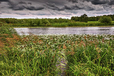 Photograph - Blowing In The Wind #g5 by Leif Sohlman