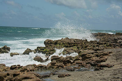 Photograph - Blowing Rocks Preserve Jupiter Island Florida by John Black
