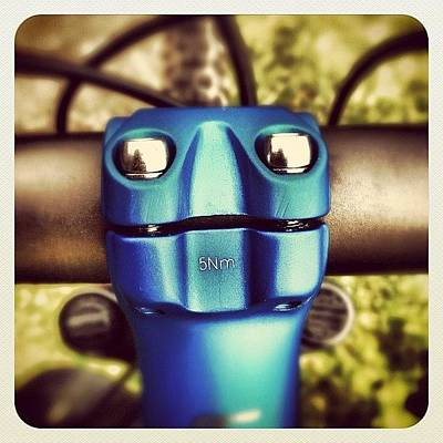 Mtb Photograph - Blue Alien Lizard #iseefaces #blue #mtb by Robert Campbell
