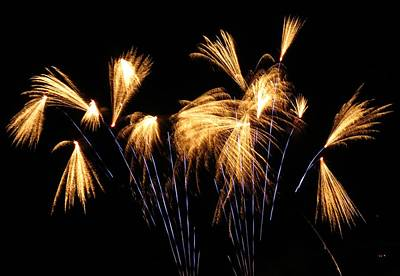 Photograph - Blue And Gold Firework Show by Kyle West