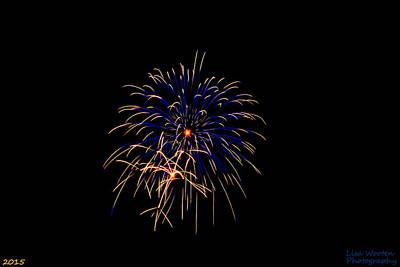 Photograph - Blue And Gold Fireworks by Lisa Wooten