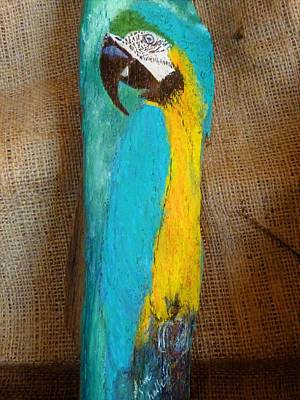 Mixed Media - Blue And Gold Macaw by Ann Michelle Swadener