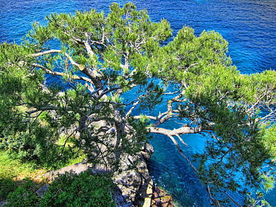 Mediterranean Sea Photograph - Blue And Green by Andreas Thust