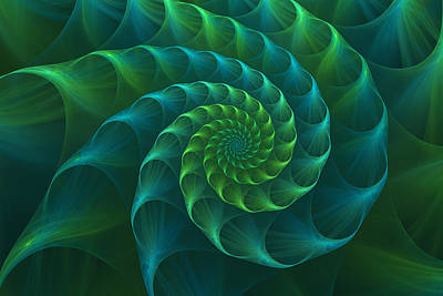 Blue And Green Nautilus Shell Art Print by Anna Bliokh