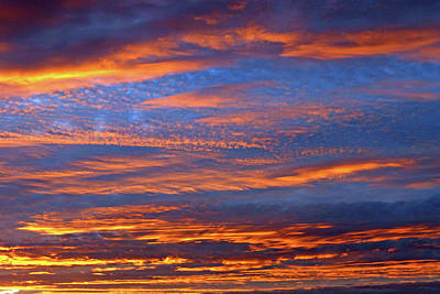 Photograph - Blue And Orange by Bruce