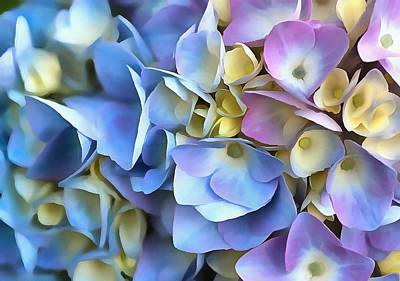Painting - Blue And Pink Hydrangea Flowers  by Tracey Harrington-Simpson