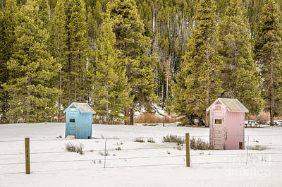 Photograph - Blue And Pink Outhouses by Sue Smith