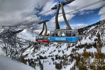 Photograph - Blue And Red Snowbird Trams by Adam Jewell