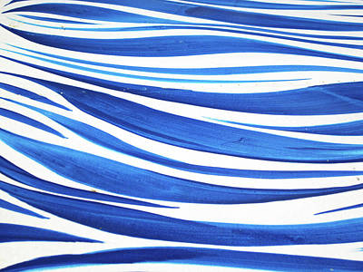 Photograph - Blue And White No. 1 by Sandy Taylor