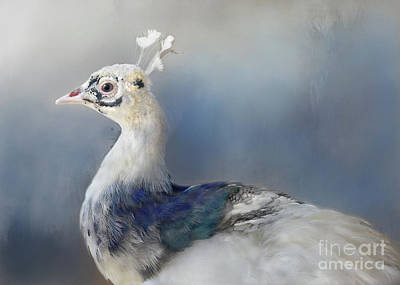 Digital Art - Blue And White Beauty by Kathy Russell