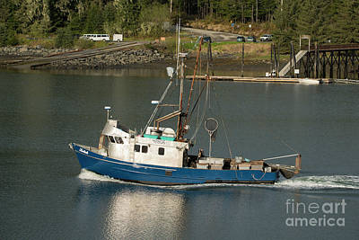 Photograph - Blue And White Fishing Boat by Loriannah Hespe