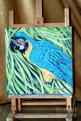 Painting - Blue And Yellow Macaw. Original Acrylic Painting For Sale by Oksana Semenchenko