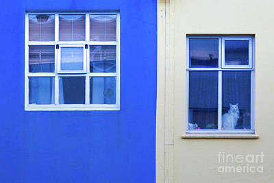 Photograph - Blue And Yellow Windows by Jerry Fornarotto