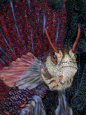 Painting - Blenny by Cora Marshall