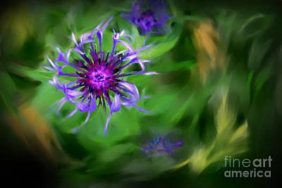 Digital Art - Blue Bachelor Button by Lisa Redfern