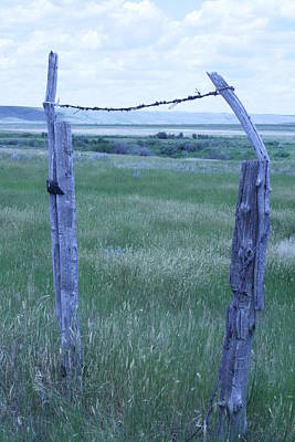 Photograph - Blue Barbwire by Mary Mikawoz