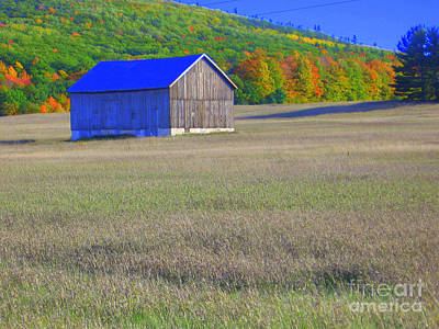 Photograph - Blue Barn by Lisa Dionne