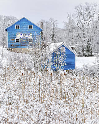 Photograph - Blue Barns Portrait by Bill Wakeley