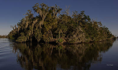 Photograph - Blue Bayou by Tim Bryan
