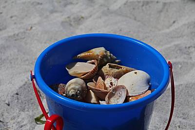 Photograph - Blue Beach Bucket by Michiale Schneider
