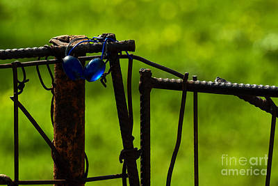 Photograph - Blue Beads, Green Dream by Konstantinos Chatziamallos