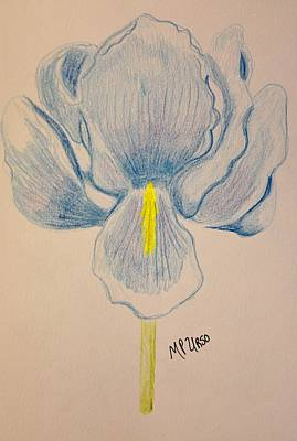 Pastel - Blue Bearded Iris by Maria Urso