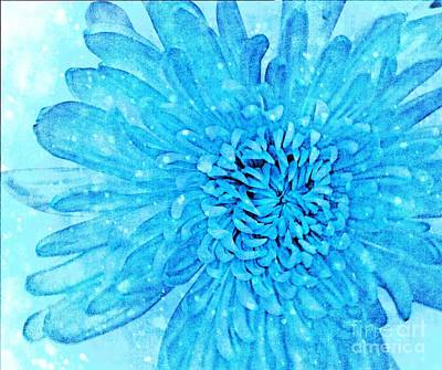 Photograph - Blue Beauty by Rachel Hannah