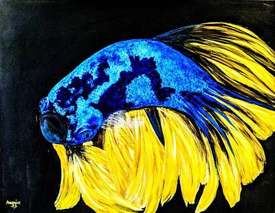 Vermeer Rights Managed Images - Blue Beta fish  Royalty-Free Image by Margarita Ortiz