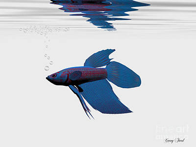 Betta Fish Painting - Blue Betta by Corey Ford