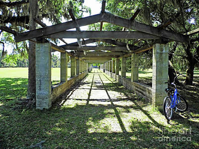 Photograph - Blue Bike At The Pergola by D Hackett